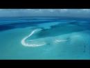 Enya - Caribbean Blue.mp4