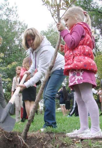 В Таганроге в Приморском парке высадили аллею «Дерево надежды»