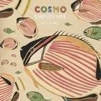 Cosmo Sheldrake альбом Hocking