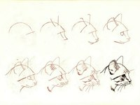 Пошаговое рисование для детей - кошки/ Несколько интересных уроков рисования. .