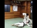 柔術拳法(jujutsu kenpo)