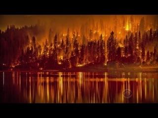 исполнение библейских пророчеств сегодня. события в мире за август/сентябрь 2014. (часть II)