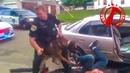 ОТКАЗАЛСЯ ПРЕДОСТАВИТЬ ДОКУМЕНТЫ полиции Получи собаку в окно