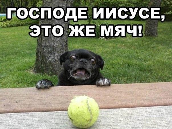 http://cs405928.userapi.com/v405928592/2e8/J8kDjRA-vZ0.jpg
