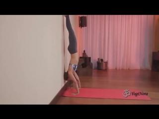 Порно видео голые порно попки голые видео голо девушка танцует перед камерой голом смотреть лучшее порно видео порно...