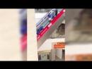 Панамцы в торговом центре 2