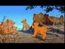 13 Король лев 1,2 Пока мы молодые