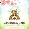 """БЛАГОТВОРИТЕЛЬНЫЙ ФОНД """"ЛОХМАТЫЙ ДРУГ""""г.Заречный"""
