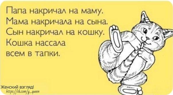 [Изображение: lEXOVqbRSZs.jpg]