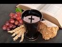 Вино виноградный сок и разоблачение алкогольных мифов