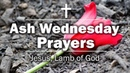 Ash Wednesday Prayers - Jesus, Lamb of God