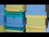 Как самому сделать улей 2 часть пчеловодство для начинающих- чертёж улья из ППС