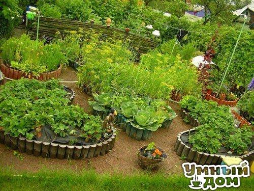 Декоративный огород на участке! - Украшаем все вокруг!!! Умный дом - уголок для дачника!