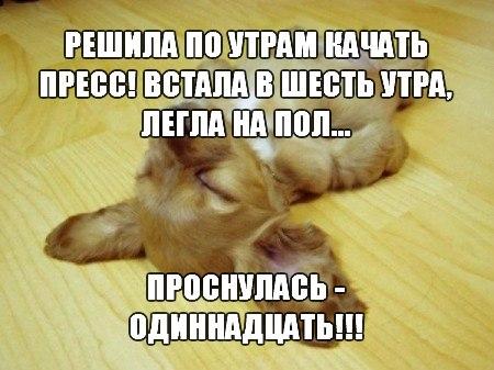 http://cs312420.vk.me/v312420014/29d1/kkw1meVUho8.jpg