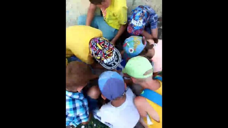Детский центр Элефант С Live