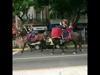 Музыкальный ансамбль Гренадерского конного полка (президентская гвардия), поющий марш Фолклендских островов
