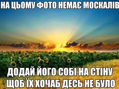 """Высокопоставленные представители стран """"нормандской четверки"""" встретятся в Минске для снятия разногласий, - МИД Германии - Цензор.НЕТ 6553"""