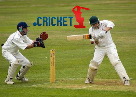 cricket my favourite sport school What is your favorite sport and why i grew up in high school playing tennis and was a member of the cricket is my favourite and it is also our national.