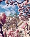 Весна в Праге прекрасна