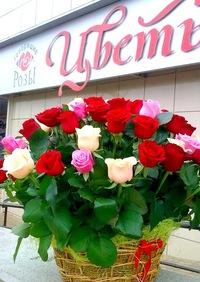 Живые цветы в челнах живые цветы оптом екатеинбург