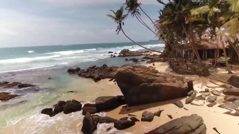 Красочная Шри Ланка