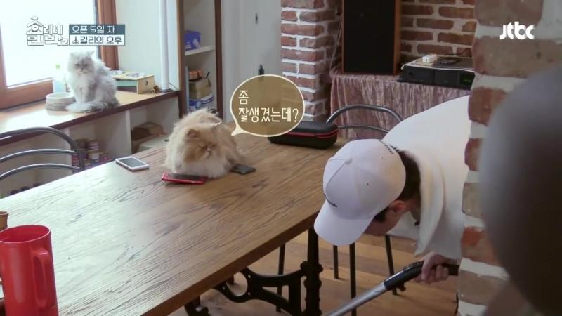 Отрывок из тв-шоу Hyori's Homestay 2 _6 тапочки