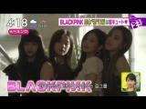 180417 BLACKPINK - PUMA SUEDE BOW @ TBS Hayadoki