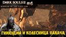 Вторжения Черная расселина и Гниющий Колесница Палача и Братство Крови Dark Souls 2 SotFS 6