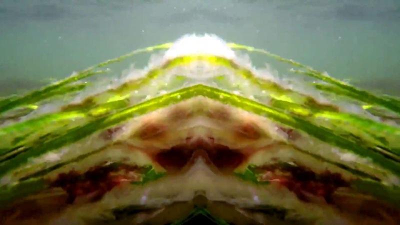 Sine of Beauty - Scalar Theorem