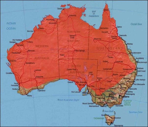Ареал обитания: широко распространена на большей части Австралии