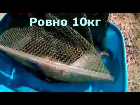 Fishing Рыбалка на озере Донузлаве