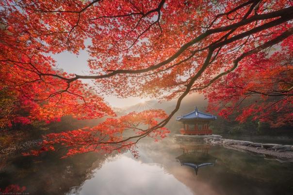 Осень в Корее