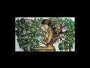 Славяно - Арийские Веды - (Книга Света) Книга 2