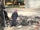 На площадке для выгула собак в детском парке на Плехановской работают кинологи