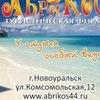 """Туристическая фирма """"Абрикос"""""""