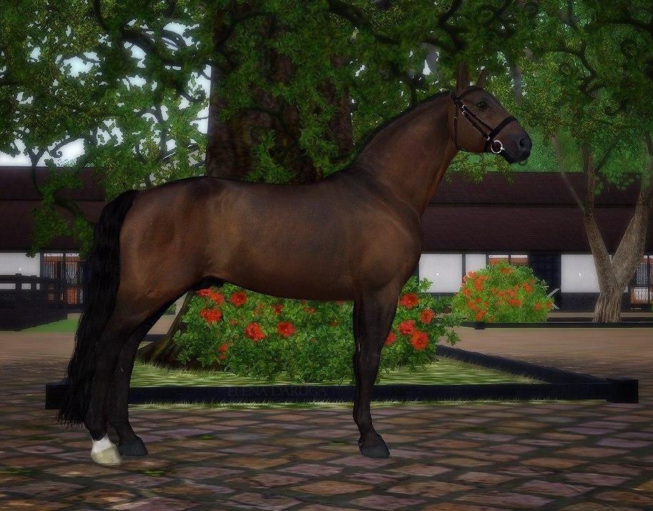 Регистрация лошадей в RHF 1.2 - Страница 2 TmCg5mKmyzg