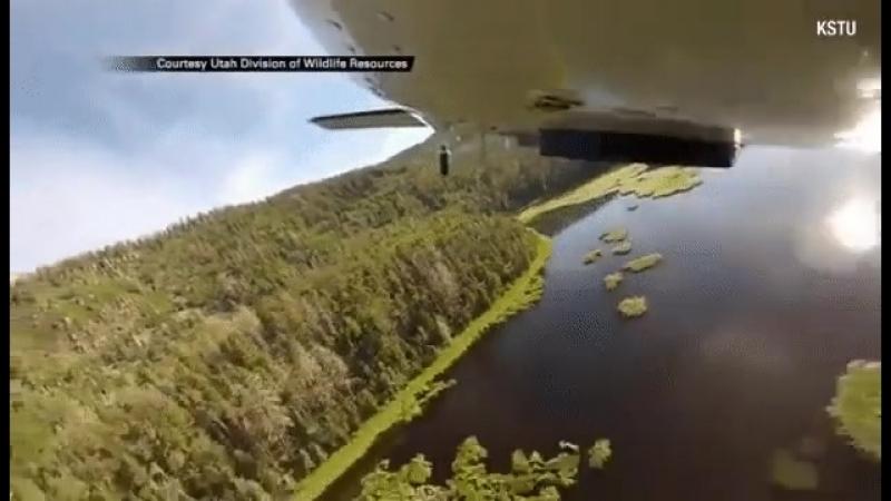 Заселение водоёма рыбой путём сбрасывания с самолёта