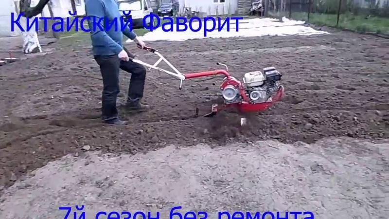 Glebogryzarką WEIMA WM1050 uprawia ogród warzywny
