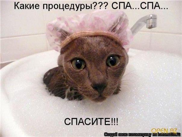 http://cs617218.vk.me/v617218386/3838/n__AvPz0KmI.jpg