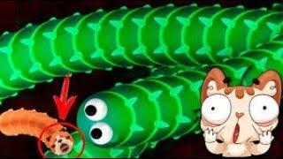 Slither.io: Змейка Слизарио-Червички тоже могут!