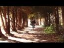 Золотая осень в Измайловском парке часть 3