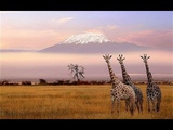 Восхождение на Килиманджаро с Виктором Набутовым