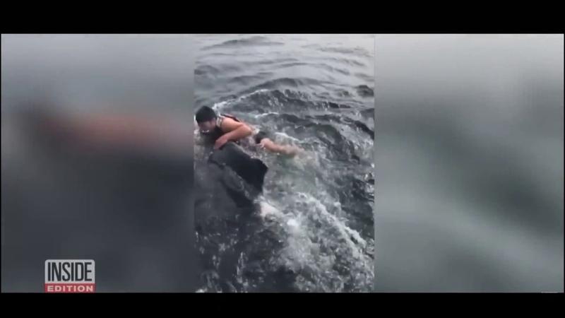 Храбрый рыбак прыгнул на спину горбатого кита и спас его из ловушки — видео