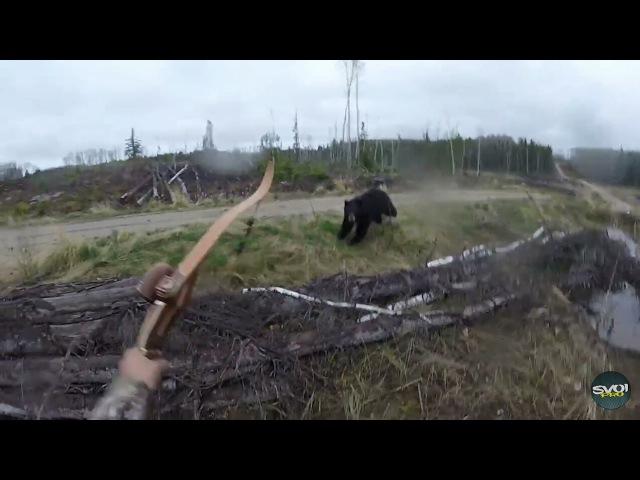 Охотник чудом остался жив после встречи с медведем на охоте. Медведь атаковал охотника