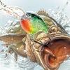 Рыбалка в Богородске