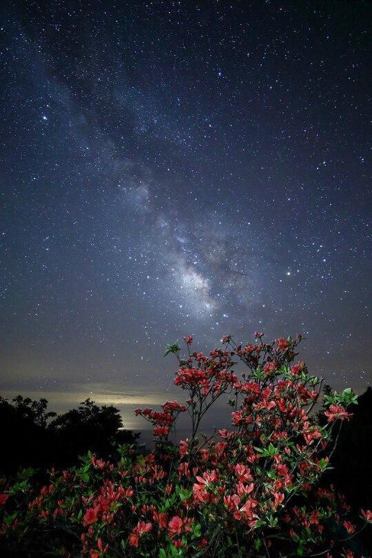 Звёздное небо и космос в картинках - Страница 38 M43ewBJ-yMI