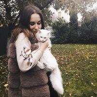 Александра Сорока | Николаев
