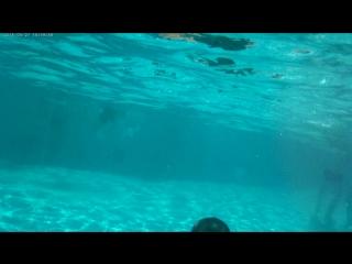 Аквапарк Лебяжий подводное плавание