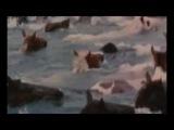 Лошади в океане Дворовая песня