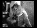 Мышь эпилептик и кот мистификатор 1914 г